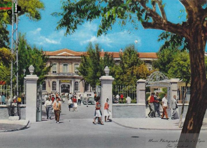 كلية الحقوق في جامعة دمشق بين 1950 و1960